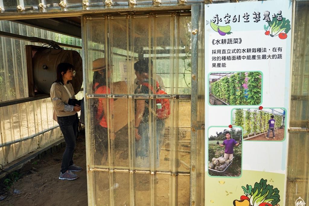 『桃園。新屋』 永安61庭園咖啡(生態農場)|寵物友善、親子友善餐廳  這裡有雞有鴨有狗還有水耕蔬菜以及生態池  動物在園區裡自由奔放很放養。