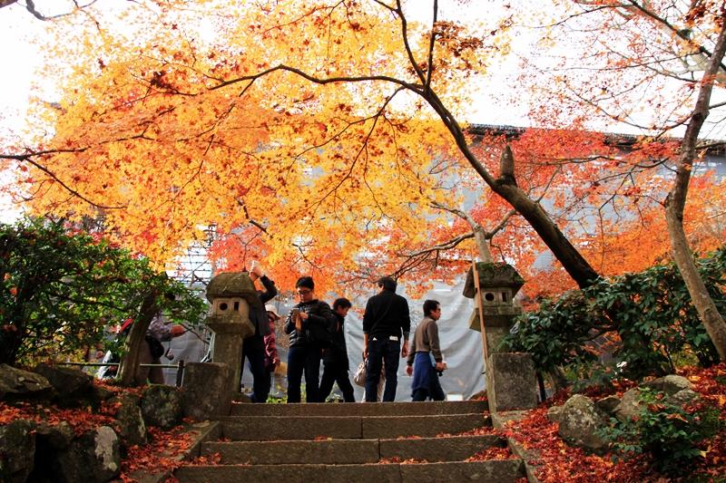 [延伸閱讀列表]日本旅遊專區