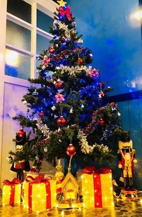 『新竹。竹北』 Oia Greek Taverna 伊亞希臘小館| 希臘帥哥為愛來台灣開希臘專門料理!滿滿地中海希臘海洋風情 好吃也好拍 還是一間寵物友善餐廳,聖誕套餐系列開放預約中喔。