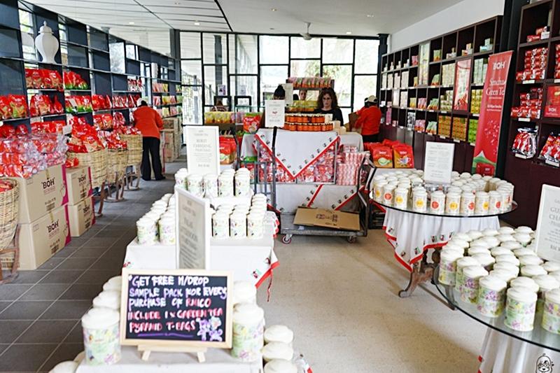 『馬來西亞』 金馬崙高原 BOH茶園|避暑勝地金馬崙的古老茶山與懸空咖啡廳,馬來西亞非常著名的紅茶品牌發源地 ,上茶山喝咖啡吃煎蕊蛋糕| 2019-0122-0126馬來西亞金馬倫跟怡保六天五夜之旅