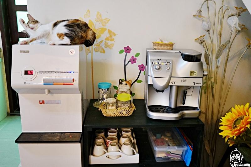 『台東。住宿』 小貓兩三隻 (寵物友善民宿)|開放寵物入住的友善寵物空間 通過國際級SGS民宿3S認證  復古鄉村風格 溫馨平價舒適還有超親人的貓咪可以玩。